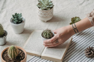 6 Ways to Maximize High Vibes in Your Home